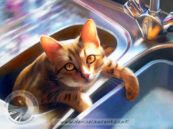 bengal cat in the sink art print
