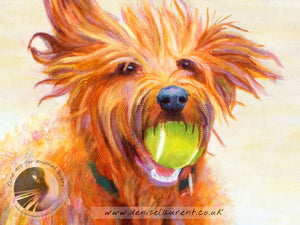 Green Ball - Labradoodle Dog Print