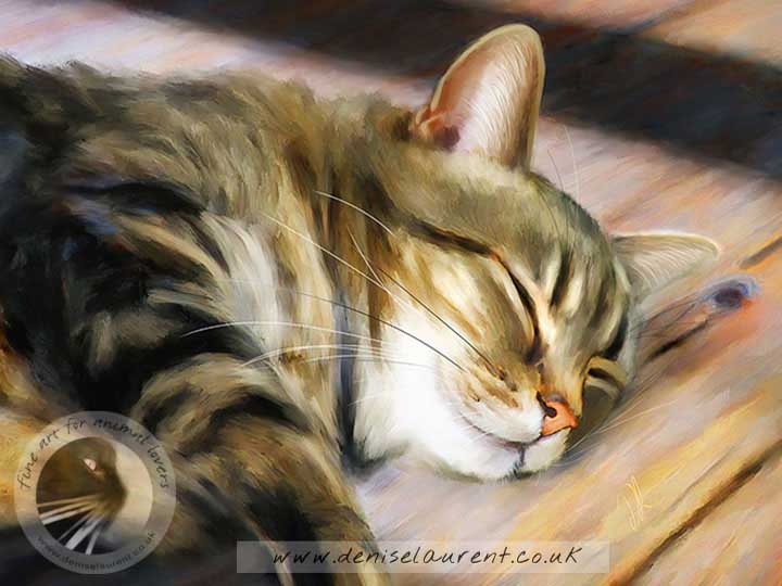 tabby cat asleep on the floor - art print