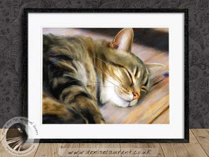 tabby cat artwork framed