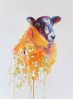 Little Ewe - Watercolour Painting Framed