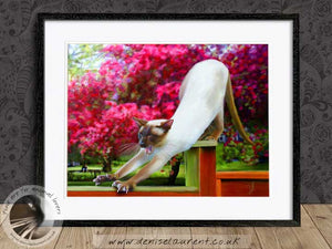 stretching siamese cat artwork framed