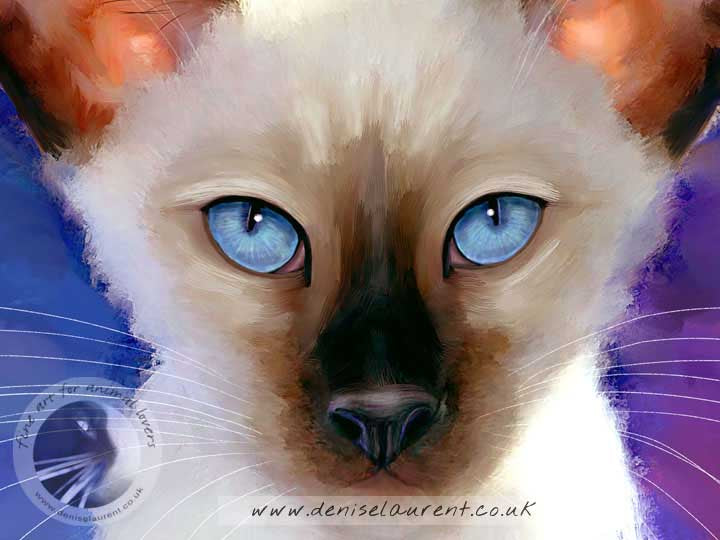 Jewel Siamese Cat Print