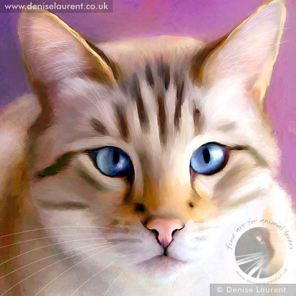 art print of a snow bengal cat with blue eyes