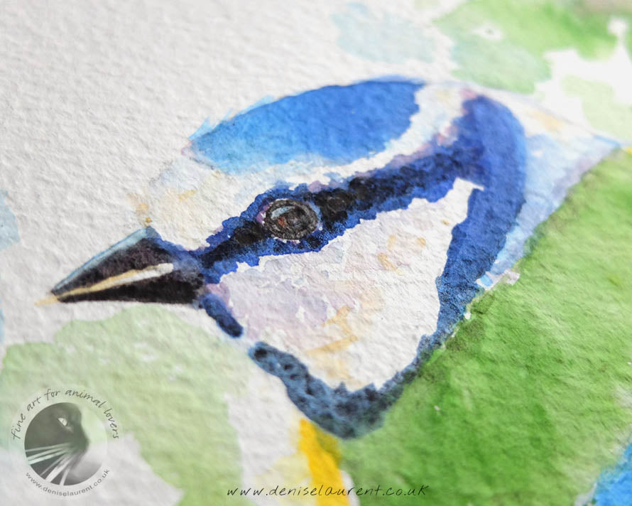 "Little Blue Tit - 12x9"" Watercolour Painting"
