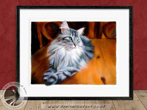 silver maine coon artwork framed