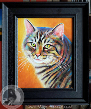 Mr Stripes No 3 - 8x10 Inch Framed Tabby Cat Painting
