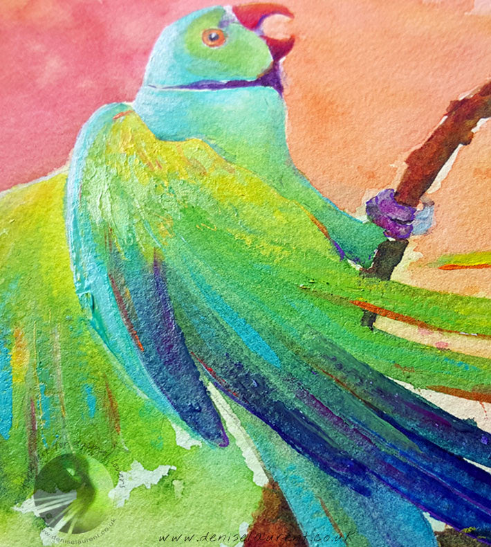 "Parakeet - 15x11"" Watercolour Painting"