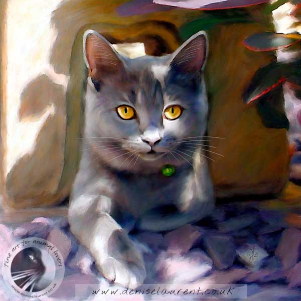 british blue cat art print