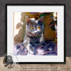 british blue cat artwork framed