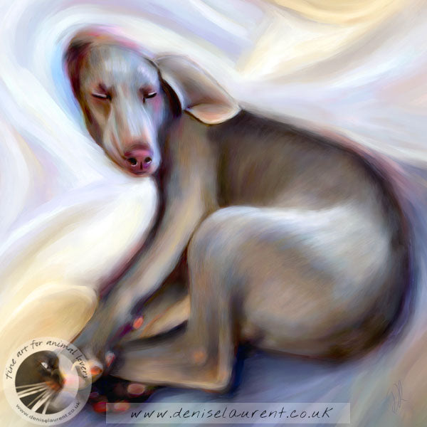 Satin Sheets - Weimaraner Dog Print