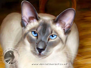 Sitting Pretty - Siamese Cat Print