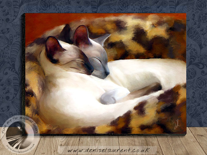 Sleeping Siamese - Panel Print