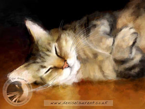 art prints of a tabby cat snoozing on a polished wooden floor