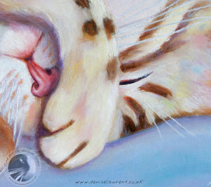 "Snooze - 10""x8"" Framed Oil Painting"