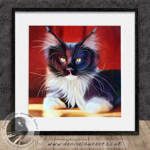 black and white main coon cat artwork framed