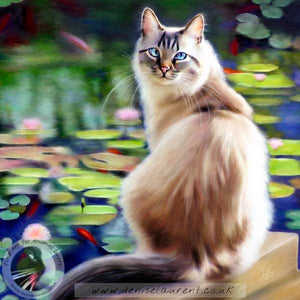 fine art print of a longhaired cat sitting by a fishpond fill of goldfish and lily pads