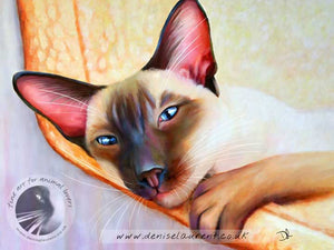art print of a siamese cat lying in a hammock