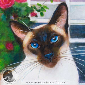 Rose Window - Siamese Cat Print