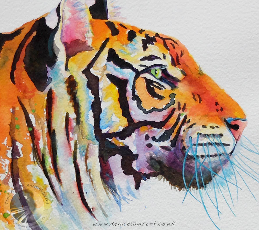 A Tiger Profile - Watercolour Painting