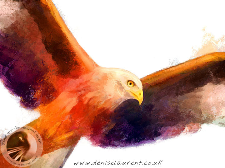 Touching The Wind - Red Kite Bird Print