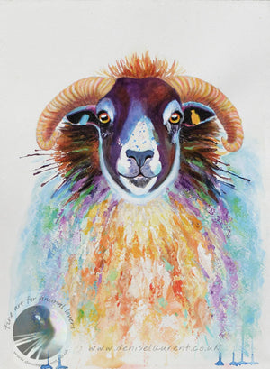 "Winston - 16x12"" Blackfaced Sheep Painting"
