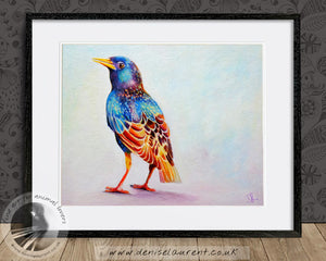 Young Starling - Bird Print