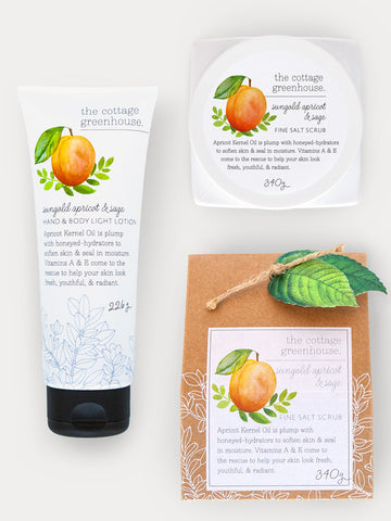 Sungold Apricot & Sage Body Lotion and Fine Salt Scrub Gift Duo