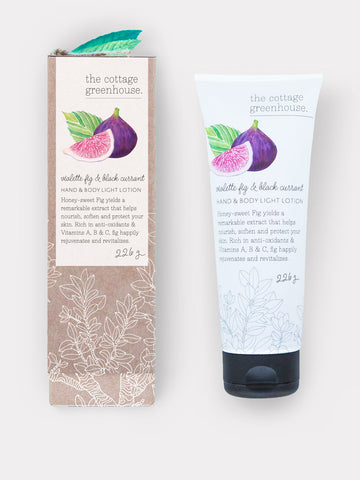 Violette Fig & Black Currant Hand & Body Lotion by The Cottage Greenhouse