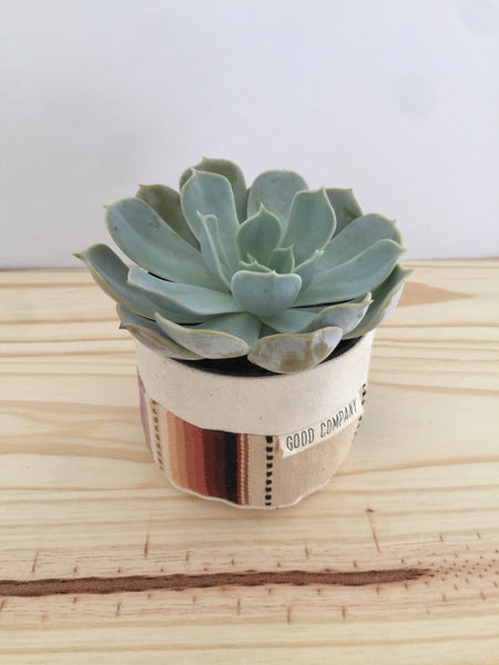 "Good Company Wares | 4"" Sitting Planter Tan"