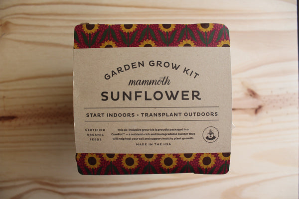 Modern Sprout | Sunflower Drop In Kit