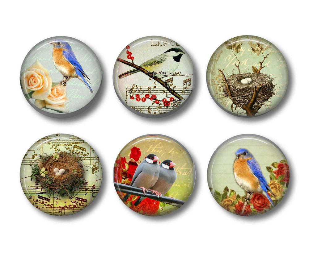 Bird badges or fridge magnets - Badge Bliss