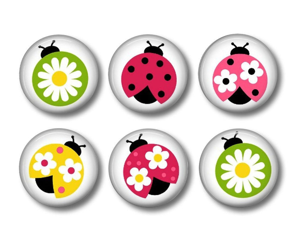 Ladybird badges or fridge magnets