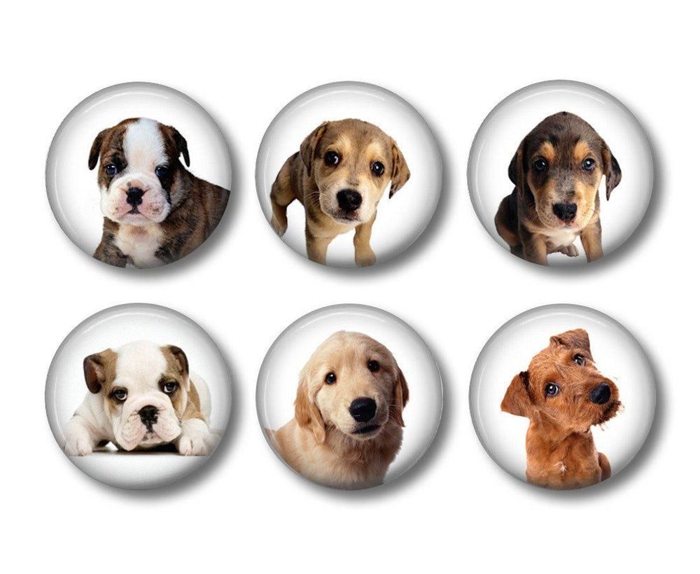 Dogs badges or fridge magnets