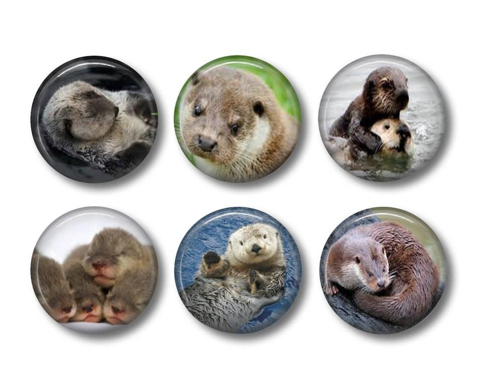 Otter badges or fridge magnets - badge-bliss