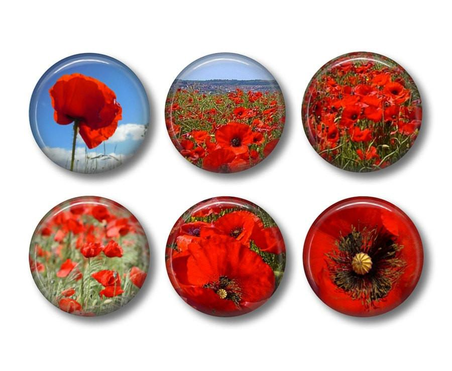 Flanders Field Poppies fridge magnets