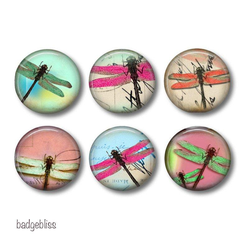 Pinback Button badges or fridge magnets Dragonfly - badge-bliss