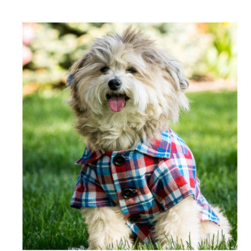 The Americana plaid shirt by Dog Threads