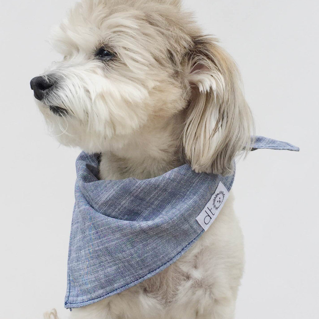 Chambray dog bandana by Dog Threads @pawboutik