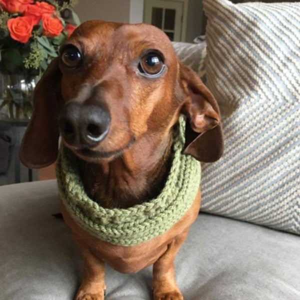 Hand-knitted Scarves by Paw Boutik