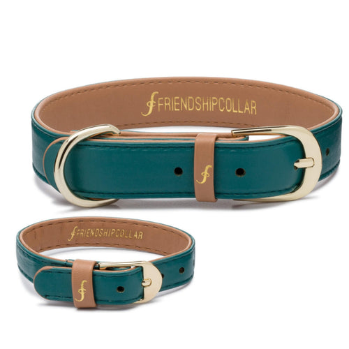 Racing Green - Friendship Collar and Bracelet