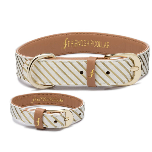 Devoted Doggy - FriendshipCollar and Bracelet