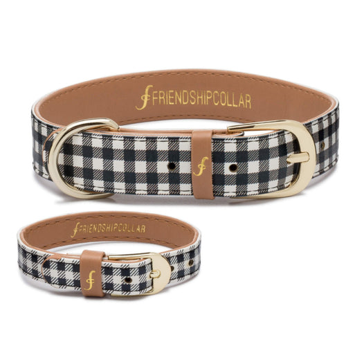 The Jet Set Pooch - Friendship Collar and Bracelet