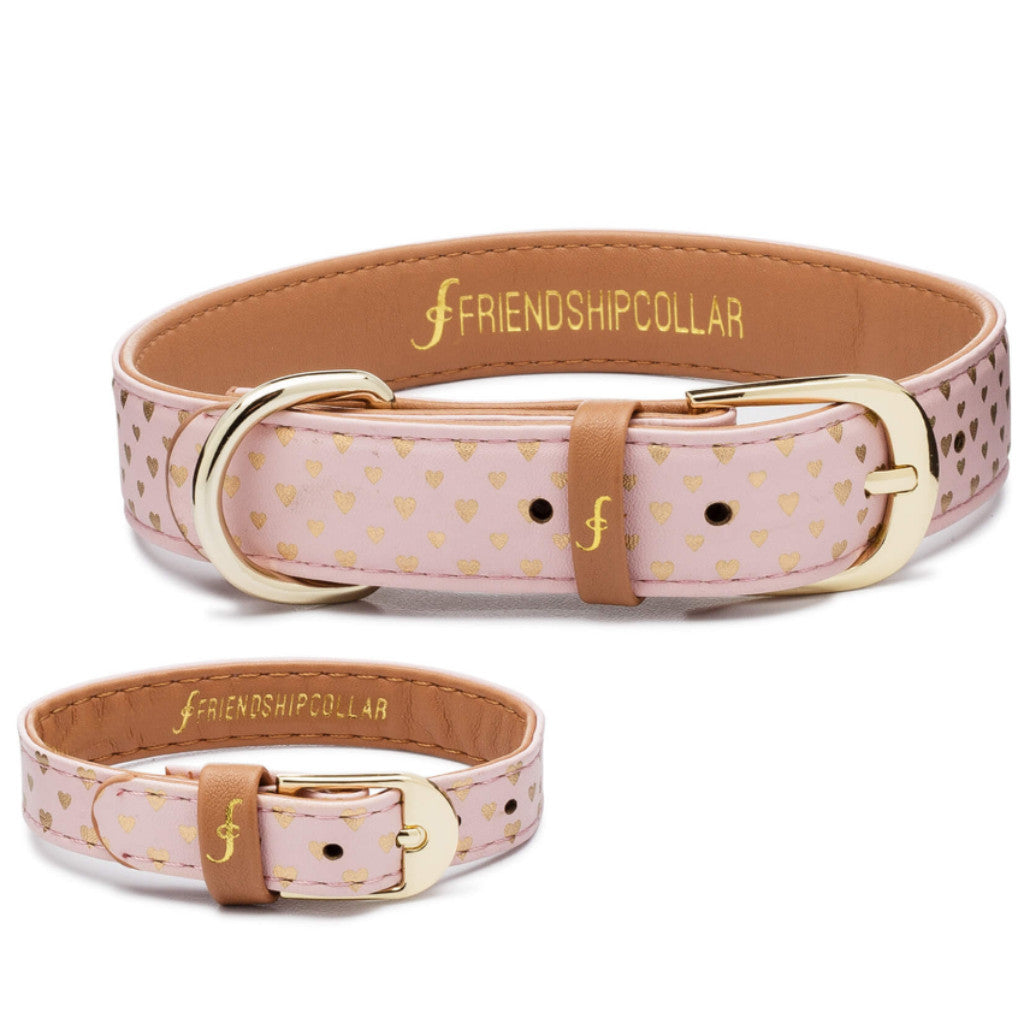 Puppy Love Friendship Collar and Bracelet