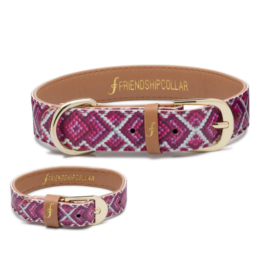Pedigree Princess - Friendship Collar and Bracelet