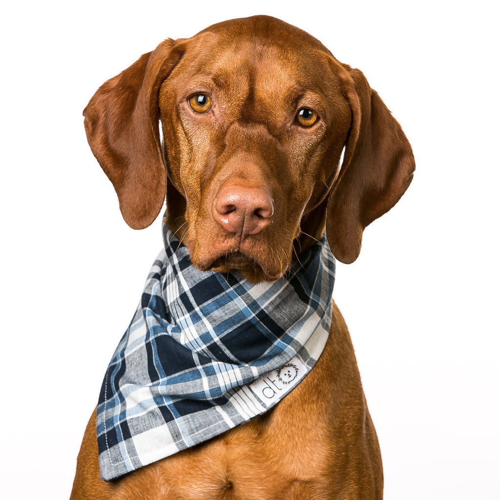 Great Lakes Bandana by Dog Threads
