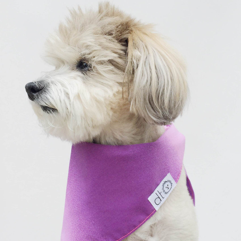 Pink Ombre dog bandana by Dog Threads
