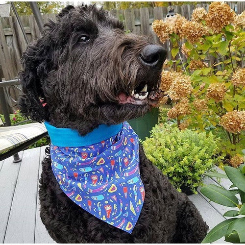 Personalized Dog Meets Art Bandanas by Sterre Studio