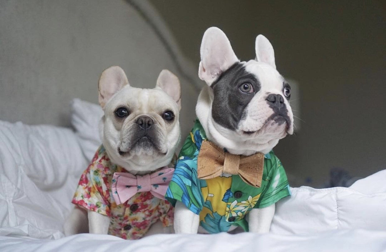 Tropical Hawaiian Shirt by Dog Threads
