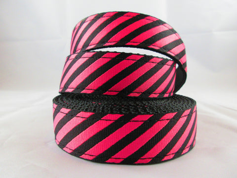 "1"" Fabulous Stripes Dog Collar - Penny and Hoover's Pig Pen"